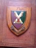 Highland Brigade Shield